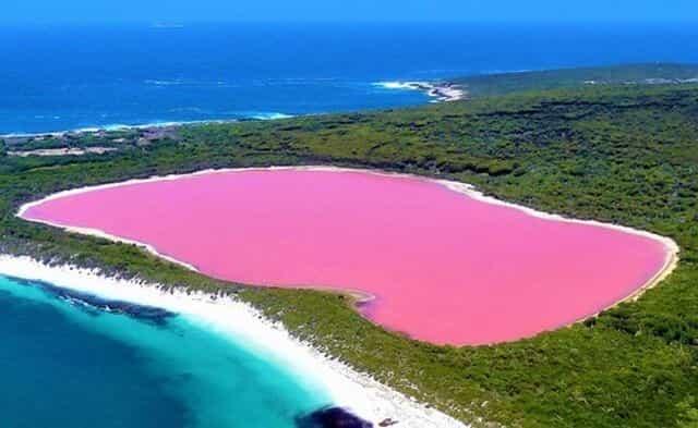 pinkest lake